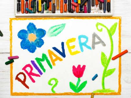 primavera: Colorful drawing: word PRIMAVERA (Spring) and beautiful flowers