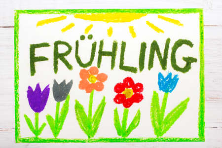 Colorful drawing:  German words Frühling (Spring) and beautiful flowers