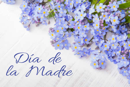 dia de la madre: Mothers day card with Spanish worsd: Happy Mothers day, and  blue flowers frame on white wooden background