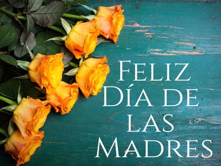 dia de la madre: Mothers day card with Spanish worsd: Stock Photo