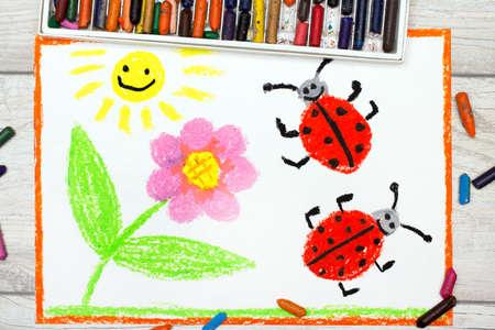 ladybug: Photo of colorful drawing: flower, sun and ladybugs on white paper background Stock Photo