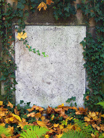 old stone plaque background surrounded by plants with copy space Stock Photo