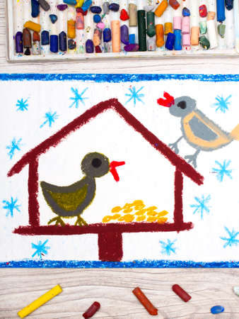 Photo of colorful drawing: Bird feeder, winter and two cute birds. Feeder for the birds