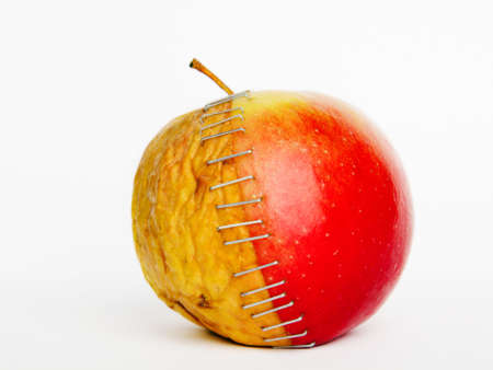 Fresh red and old yellow apple halves with staples on white background, plastic surgery  metaphor