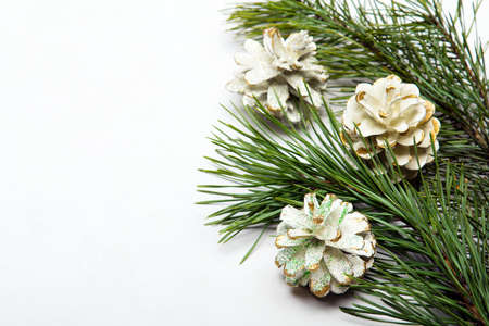 pine twigs and white decorative cones on a white background, copy space Stock Photo