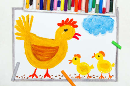 Colorful drawing:  brooding hen and three little chickens