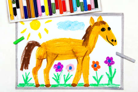Colorful drawing: cute smiling horse in the pasture Banco de Imagens