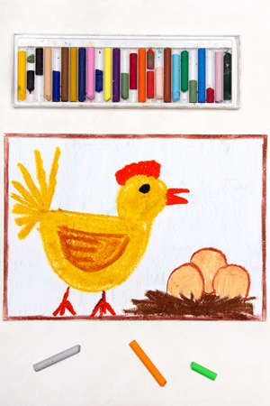 Colorful drawing: brooding hen and three eggs in a nest Banco de Imagens