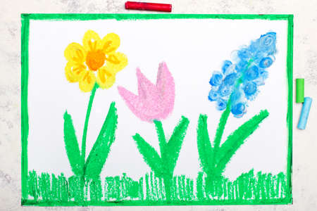 Colorful drawing: spring meadow with beautiful flowers Zdjęcie Seryjne