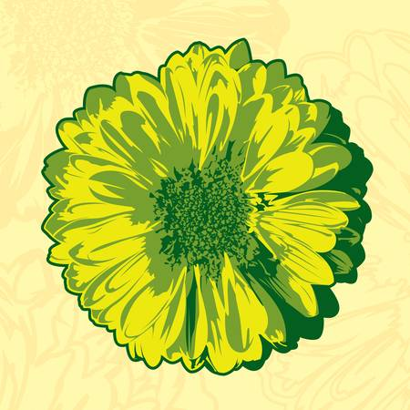 Yellow flower in the abstract background Vector