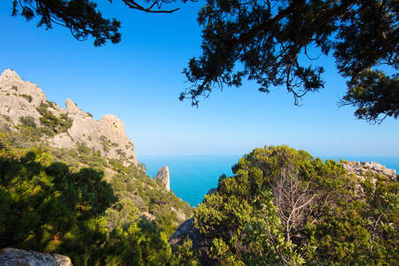Beautiful tropical landscape with the top of the mountain overlooking the rocks and the sea, framed by pine branches