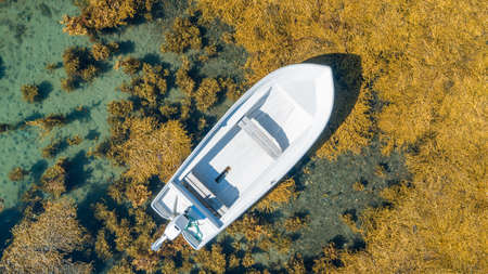 aerial drone view from the top to the blue lagoon with azure sea water with a boat and seaweed, vacation concept