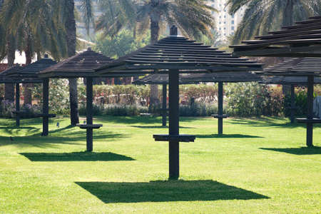 Resort in Dubai, green lawn with umbrellas for shade. Vacation or travel holiday concept. 免版税图像