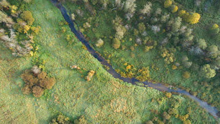 Aerial view of the autumn forest Stock fotó - 161280423