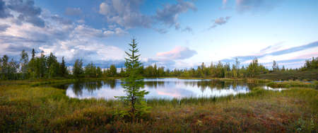 Summer panorama landscape of sunset on lake, north, siberian, tundra. Vacation travel concept