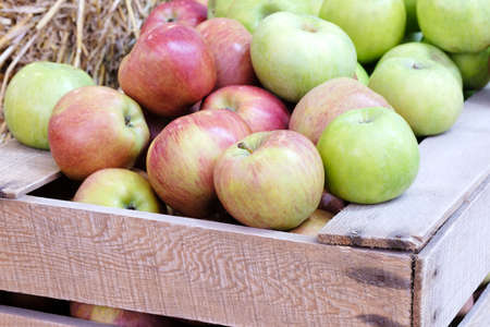 Fresh red apples in a wooden box and crate, agriculture concept