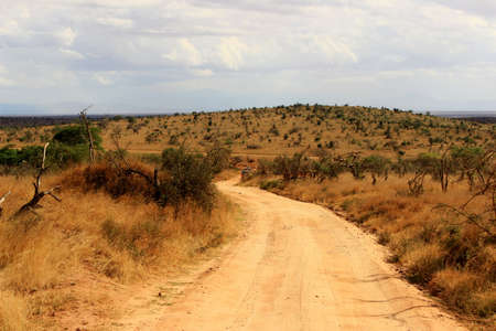 Dusty safari road in Tsavo East National Park, Kenya photo