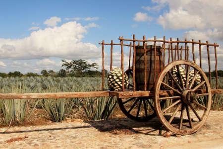 오래 된 전통적인 멕시코 트레일러 스톡 콘텐츠