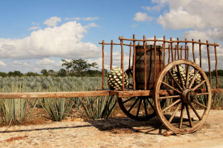 Old traditional mexican trailer