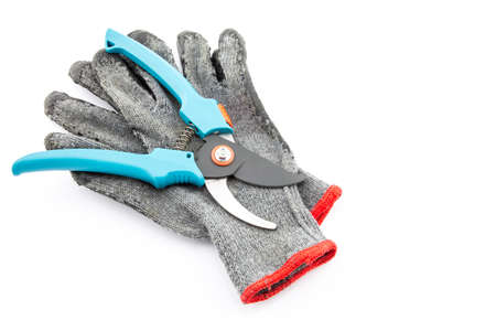 Pruning shears and gardening worn gloves isolated on white photo