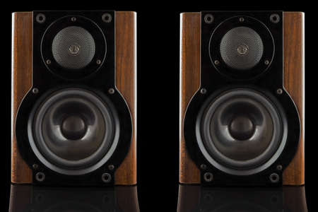two party system: Pair of modern sound speakers in classic wooden casing isolated on black  Stock Photo