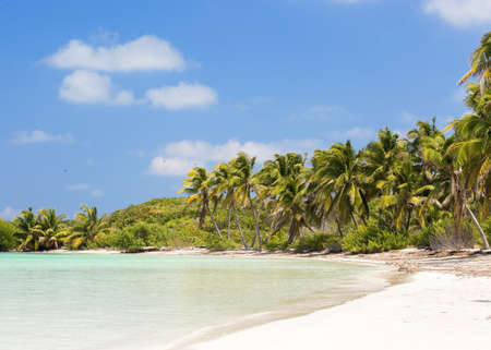 Tropical paradise on Contoy Island National Park, Mexico photo