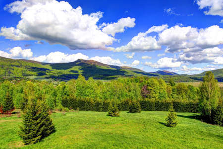 contrastive: Landscape of Poloniny range in Bieszczady Mountains, Poland. Photo made using HDR technique