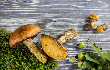 spunk: Setas del bosque frescos contra el fondo de madera