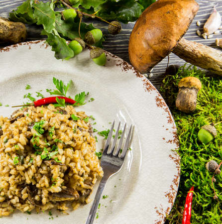 Italian risotto with mushrooms on a wooden table photo