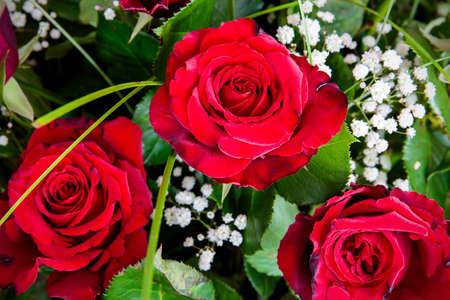 rosas rojas: Detalle de la hermosa reci�n cortado ramo de rosas rojas Foto de archivo