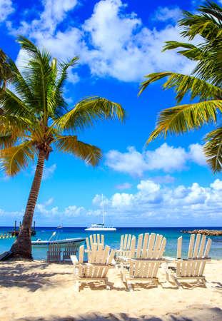 Beautiful caribbean beach on Saona island, Dominican Republic Reklamní fotografie