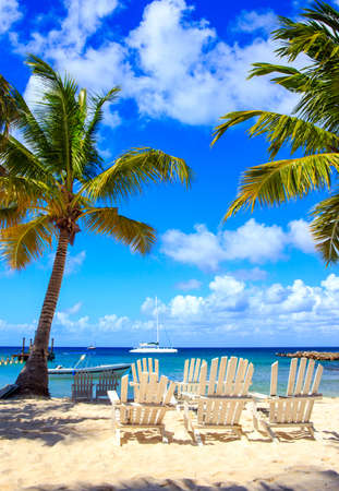 Beautiful caribbean beach on Saona island, Dominican Republic Foto de archivo