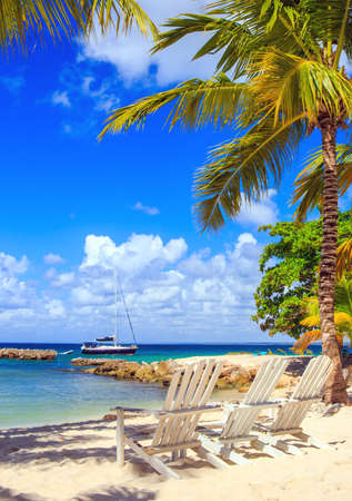 dominican republic: Beautiful caribbean beach on Saona island, Dominican Republic Stock Photo
