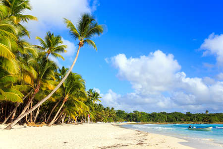 republic dominican: Beautiful caribbean beach on Saona island, Dominican Republic Stock Photo