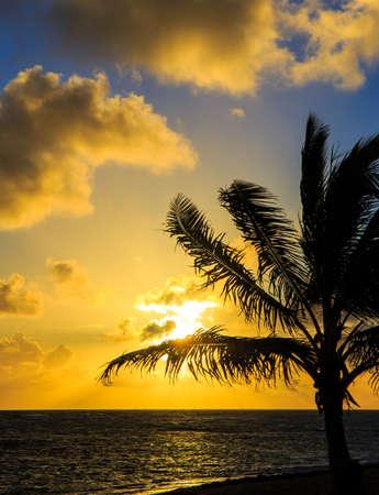 Beautiful sunrise over Caribbean sea in Dominican Republic photo