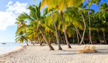 Beautiful caribbean beach on Saona island, Dominican Republic Standard-Bild