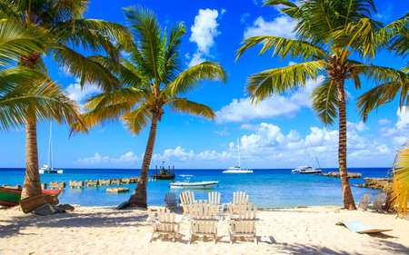 caribbean: Beautiful caribbean beach on Saona island, Dominican Republic Stock Photo