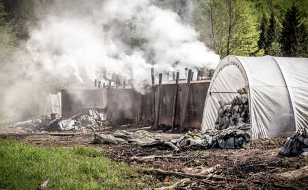 out of production: Traditional way of charcoal production in the forest of Bieszczady Mountains Poland
