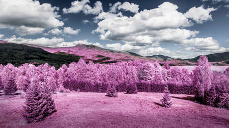 infra red: Infrared photo of forest and mountains landscape