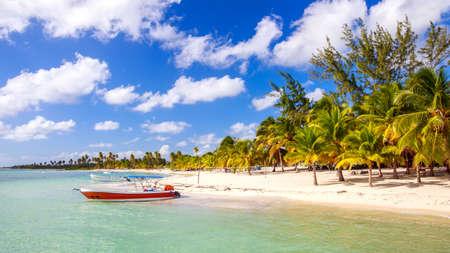 Beautiful caribbean beach on Saona island Dominican Republic photo