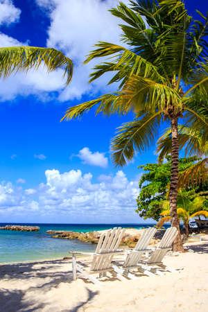 도미니카 공화국 Saona 섬의 아름다운 카리브 해변