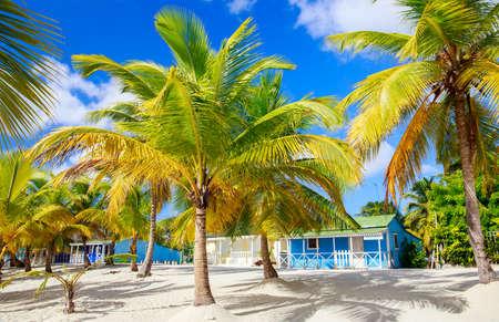 Traditional caribbean houses on Saona island, Dominican Republic