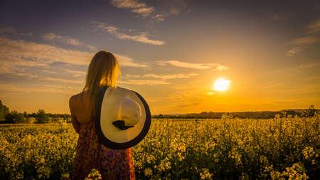 Sundown and idyllic landscape of yellow rape field