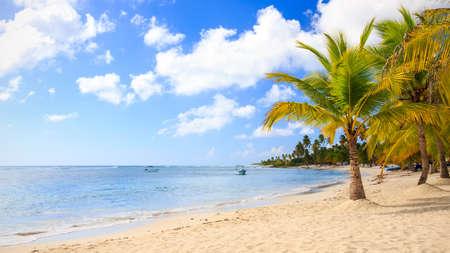 chaloupe: Belle plage des Cara�bes sur l'�le de Saona, R�publique dominicaine Banque d'images