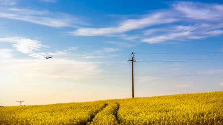 Avion survolant beau champ de colza jaune quelque part dans le pays Banque d'images