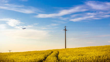 Plane flying over beautiful yellow rape field somewhere in the country Banco de Imagens