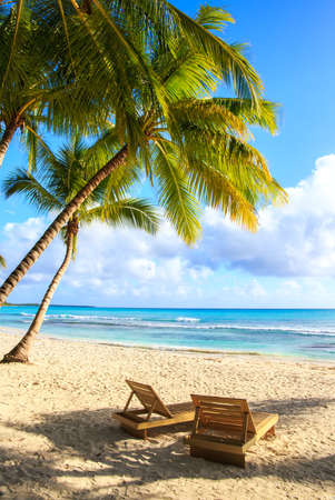 sunny beach: Beautiful caribbean beach on Saona island, Dominican Republic Stock Photo