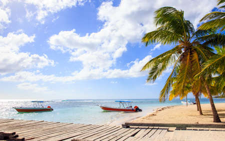 Beautiful caribbean beach on Saona island, Dominican Republic Banco de Imagens