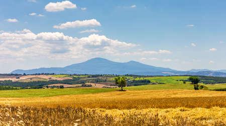 pienza: Summer Tuscan scenery near old Pienza town Stock Photo