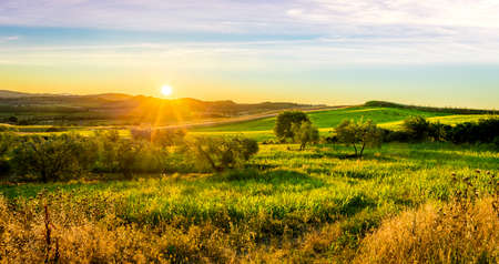tuscan: Sunrise over green tuscan hills in Italy